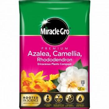 Miracle Gro Premium Azalea,...